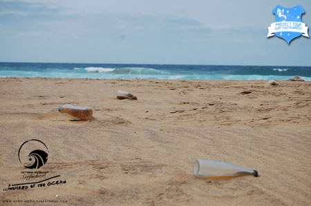 Beachcleaning 25.03.2012